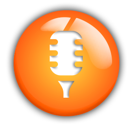 voice-icon-plain