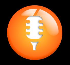 voice-icon-plain